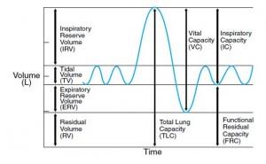 spirometri result